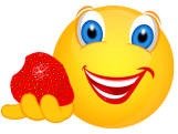 Smiley – Garten 2