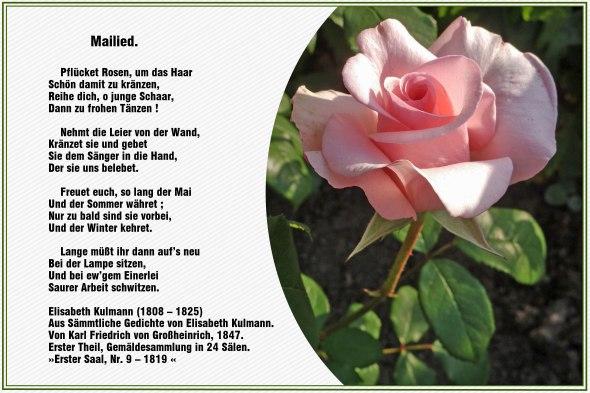 Mailied – Elisabeth Kulmann