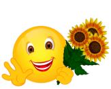 Smiley – Sonnenblumen 5